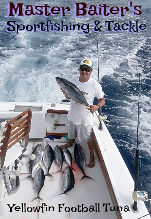 Football Yellowfin Tuna at Corbetena range in size by the day now...