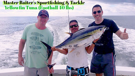Yellowfin Tuna show up at Corbertena.. they're a little bigger every day now!